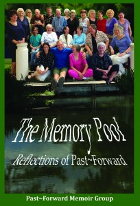 The Memory Pool_Final Cover_Web